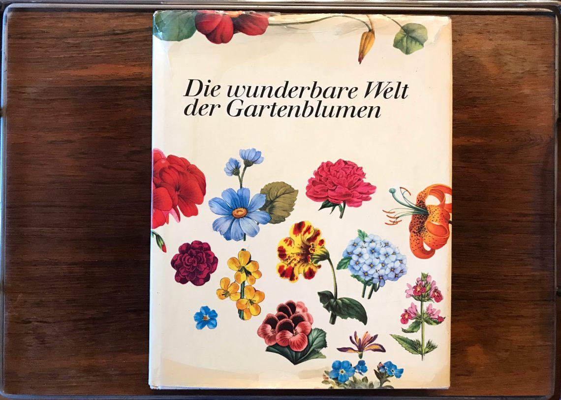 Gartenblumen_1